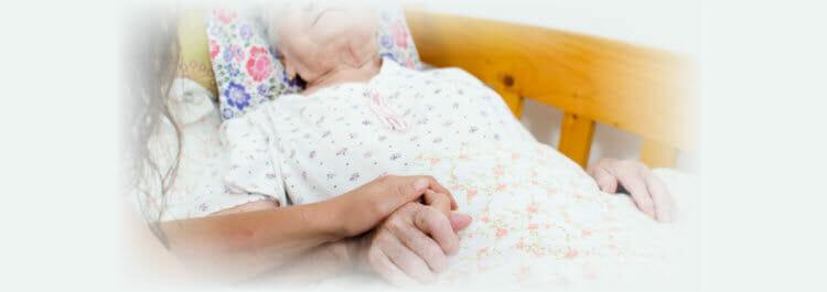 compassionate companion care