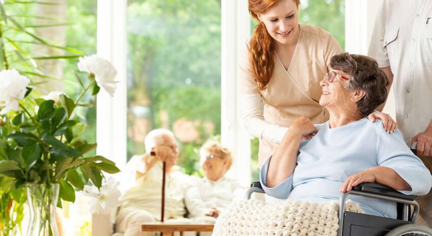 elderly companion care